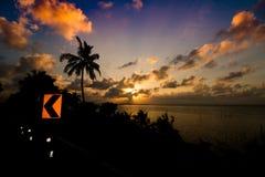 Puesta del sol tropical por el mar con la silueta del árbol del plam o de coco Fotos de archivo
