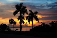 Puesta del sol tropical viva horizontal Imágenes de archivo libres de regalías