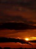 Puesta del sol urbana Fotografía de archivo