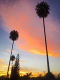 puesta del sol urbana Imágenes de archivo libres de regalías