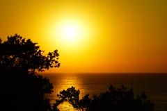 Puesta del sol del verano en el Mar Negro con los árboles del circuito imagen de archivo