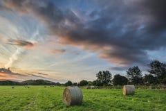 Puesta del sol vibrante del verano hermoso sobre el paisaje del campo del fi Imagen de archivo