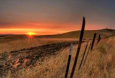 Puesta del sol viva Foto de archivo libre de regalías