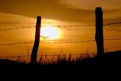 Puesta del sol y alambre de púas Foto de archivo