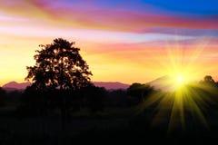 Puesta del sol y luz Sun justo en hermoso colorido del cielo y de la nube con el árbol de la silueta en arbolado Foto de archivo