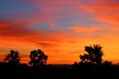 Puesta del sol y luz Sun justo en hermoso colorido del cielo y de la nube con el árbol de la silueta en arbolado Fotos de archivo