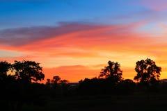 Puesta del sol y luz Sun justo en hermoso colorido del cielo y de la nube con el árbol de la silueta en arbolado Fotografía de archivo
