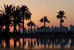Puesta del sol y palmas Foto de archivo libre de regalías