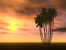 Puesta del sol y palmera Fotografía de archivo