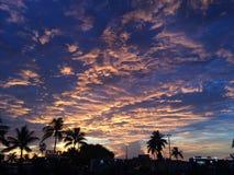 Puesta del sol y palmeras Fotos de archivo libres de regalías