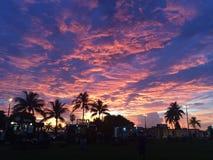 Puesta del sol y palmeras Imagen de archivo libre de regalías
