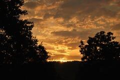 Puesta del sol y siluetas del árbol Foto de archivo