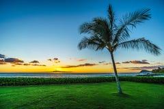 Puesta del sol y una palmera debajo del cielo azul a lo largo de la costa en Ko Olina en la costa oeste de Oahu imagenes de archivo