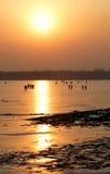 puestas del sol imagenes de archivo