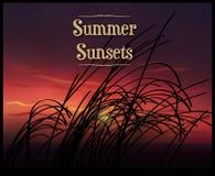 Puestas del sol del verano Foto de archivo