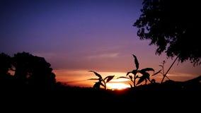 Puestas del sol del país imágenes de archivo libres de regalías