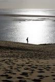 Puesto a contraluz en la duna Foto de archivo