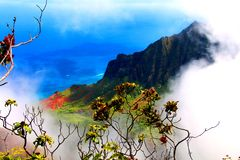 Puesto de observación de niebla en Kauai Imagen de archivo