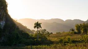 Puesto de observación en el valle de Vinales en Cuba en Cuba Fotos de archivo