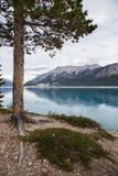 Puesto de observación sobre Abraham Lake Imágenes de archivo libres de regalías