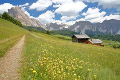 Puez Odle mountain range viewed from a hiking path near Raiser Pass with mountain huts and yellow flowers in the foreground, Val G stock photography