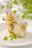 Puff cake. Traditional polish puff cake called Karpatka - Mountain Cake Stock Photography