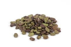 Puffbohne (Viciabohne, Fava Bean, Ackerbohne, Bell Bean oder Tic Bean) Lizenzfreie Stockfotografie