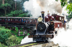 Puffende Billy-stoomtrein in de Dandenong-Waaiers stock foto's
