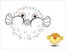 Puffer fish Cartoon Connect the dots and color. Vector Stock Photo