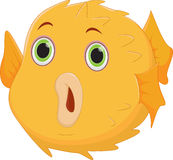 Puffer fish cartoon Royalty Free Stock Images
