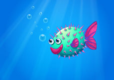 A puffer fish smiling. Illustration of a puffer fish smiling Stock Photos