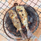 Puffer on the grill Royalty Free Stock Photography