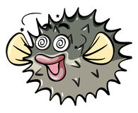 Pufferfish with dizzy face Royalty Free Stock Photo
