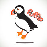Puffin bird Stock Image