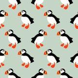 Puffin seabird seamless vector pattern. vector illustration