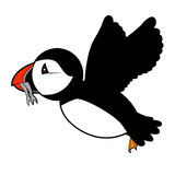 Puffin vector illustration on white background Stock Images