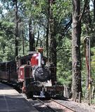 Puffing Billy in the hills stock photo