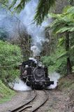 Puffing Billy Train Royalty Free Stock Image