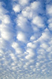 Puffy Cloud Background. Sky just full of puffy white clouds Stock Photo
