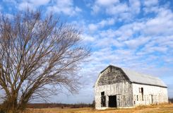 Puffy Clouds, Intricate Branche, Greying Barn. An abandoned, greying, peeling barn star in the cloud-studded scene with a tree that has intricate branches royalty free stock photos