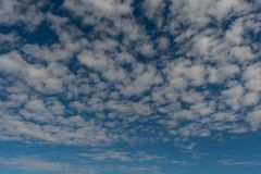 Puffy Field of Clouds on Blue Sky. Background Image Royalty Free Stock Photography