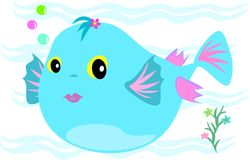 Puffy Fish. This cute Blue Puffy Fish blows bubbles easily Stock Photography