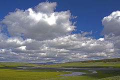 Puffy white skies in a deep blue sky in Yellowstone. Royalty Free Stock Images