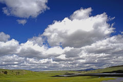 Puffy white skies in a deep blue sky in Yellowstone. Royalty Free Stock Photo