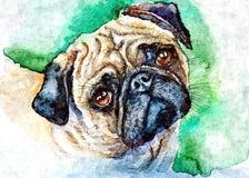Грустный мопс Владелец собаки ждать r Крася влажная акварель на бумаге Наивное искусство Абстрактное искусство Рисуя акварель на  иллюстрация штока