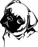 Pug. Line Art Illustration of a Pug