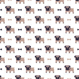 Pug and bone pattern Royalty Free Stock Photos