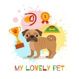 Pug care infographic concept with dog grooming. Isolated elements. Puppy training colorful cartoon poster vector illustration template for web sites, pet shops vector illustration