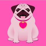 Pug/de bokser van de zitting met halsband met hart Ta Royalty-vrije Stock Foto's