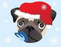 Pug in de hoed van Kerstmis Royalty-vrije Stock Afbeelding